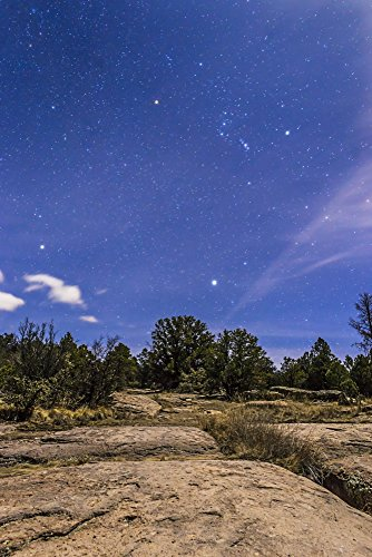 Alan Dyer/Stocktrek Images – Orion and Sirius rising in the moonlight over Gila National Forest New Mexico. Photo Print (28.70 x 43.18 cm)